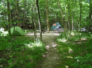 Site #14: A large site suitable for groups. Enough space for 4-5 tents.